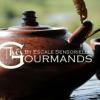Thés au chocolat des gourmandises cacao thés !