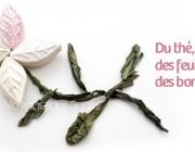 Bonbons au thé vert sencha
