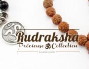 Rudraksha graines sacrées ou larmes de Shiva