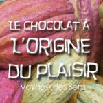 Chocolat-escalesensorielle