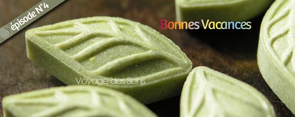 Thé vert sencha Bonbon - Escalesensorielle