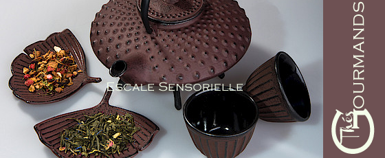 chocolat-thes-gourmand-escale-sensorielle