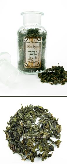 Mont huang thé vert top qualité Escale sensorielle